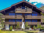 Apartma Turkino C, ki sprejme 6 oseb, se nahaja v predelu Winkelmatten, 1 km od centra mesta, 300 m od smučišča in žičnice Zermatt-Matterhorn.